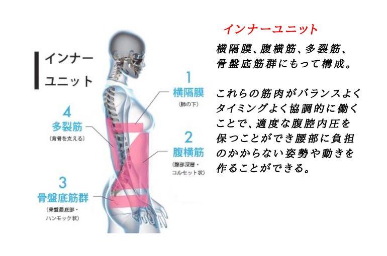 腰痛の予防と対策 四ツ谷(新宿)の整体院 | 健康についてのブログ | 四ツ谷を拠点とする整体院は日々の様子や施術メニューをブログにて紹介しています
